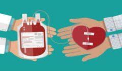 فى اليوم العالمي للتبرع بالدم.. بدران: لها فوائد عظيمة للمتبرع والمريض