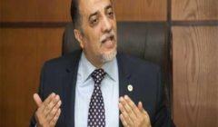 """رئيس """"ائتلاف دعم مصر"""": شعب مصر جنود إذا لزم الأمر"""