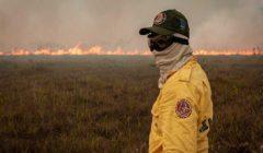 البرازيل.. نشوب أكثر من ٢٢٠٠ حريق في الأمازون خلال مايو الماضي