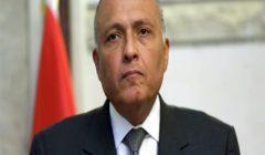 شكري يدعو المجتمع الدولي للتصدي لخطر التنظيمات الإرهابية في ليبيا