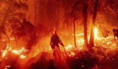 العالم يشتعل| بخلاف حرائق أمريكا.. هذه أسوأ الحرائق منذ عقود (صور)